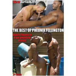 The Best of Pheonix Fellington